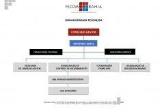 Organograma FECOM_page-0001 (1)